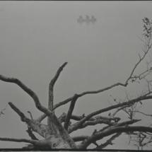 Baum im Wasser und Boot Ausschnitt